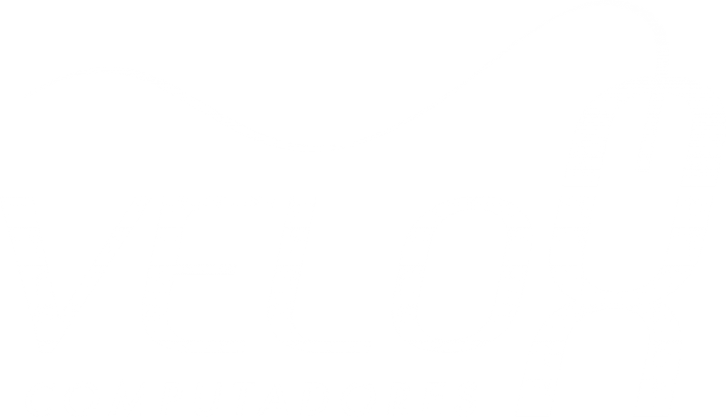 Logotipo Velox Computadores
